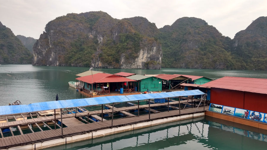 Pearl Farm - Halong Bay
