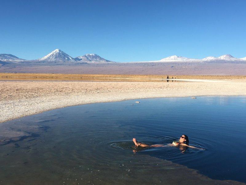 Laguna Cejar. - Deserto de Atacama.