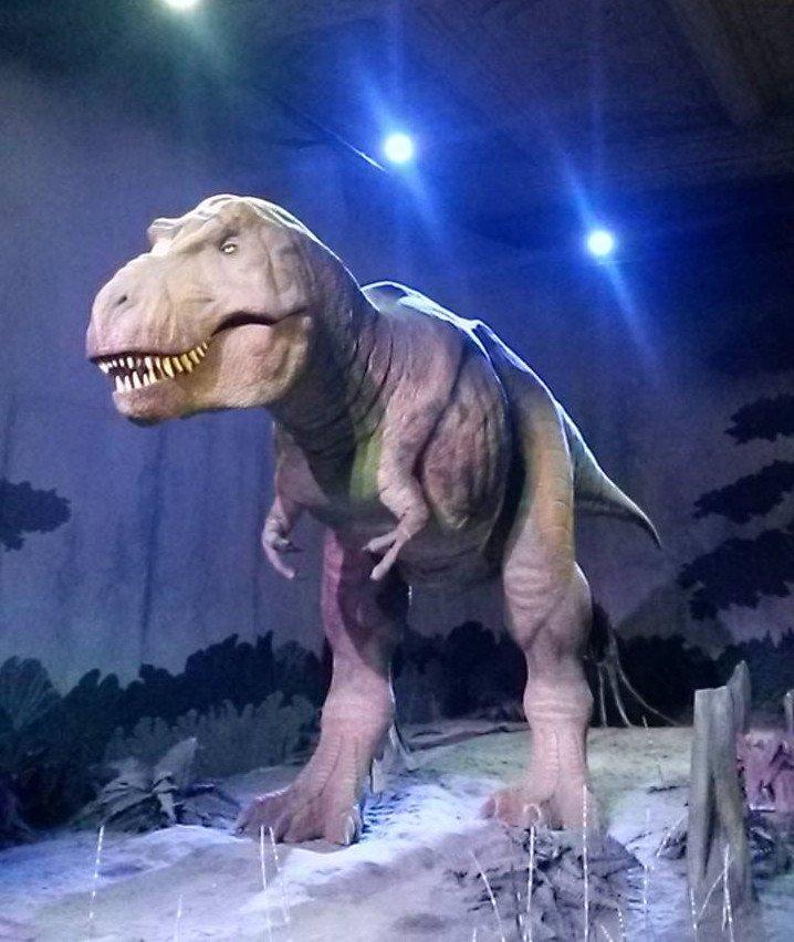Dinossauro do Museu de História Natural