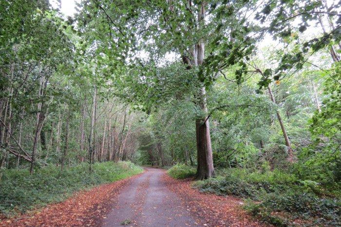 Parque Nacional de Killarney.