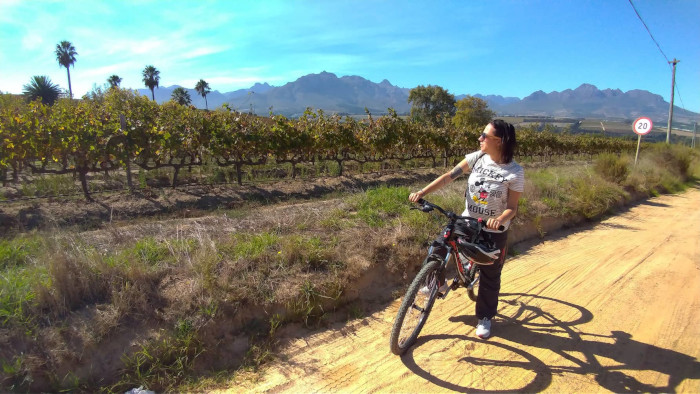 Melhores vinícolas de Stellenbosch.