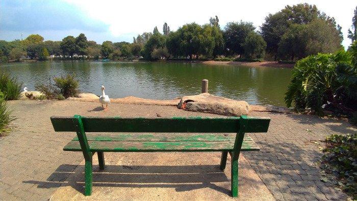 Parque Zoo Lake | O que fazer em Joanesburgo