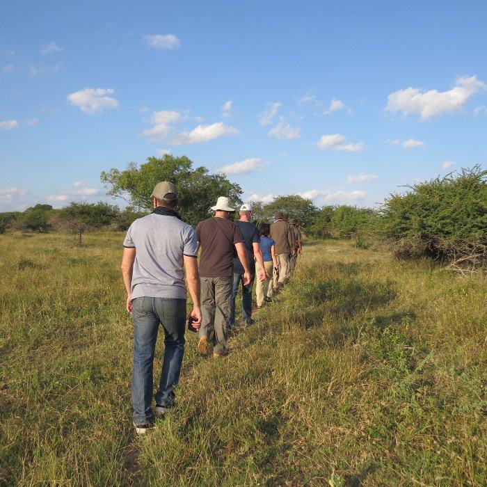 Afternoon walk, Kruger National Park.