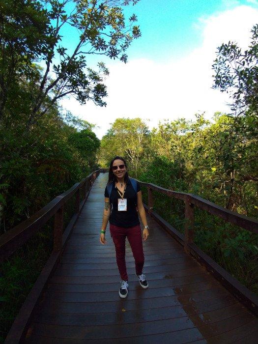 Passarelas do Parque Ecológico Imigrantes