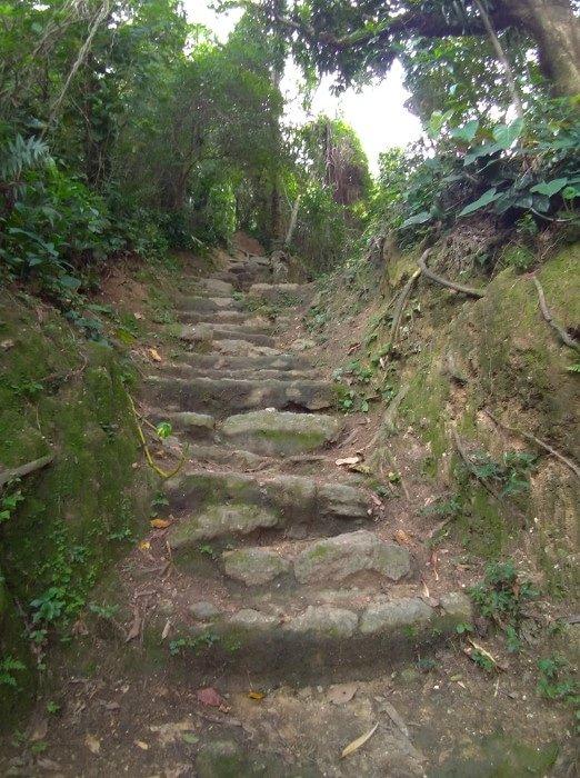 Trilha do Parque Natural da Catacumba | O que fazer no Rio de Janeiro com pouco dinheiro